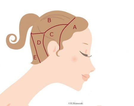 頭の反射区