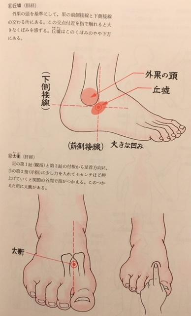 肝・胆 (2)