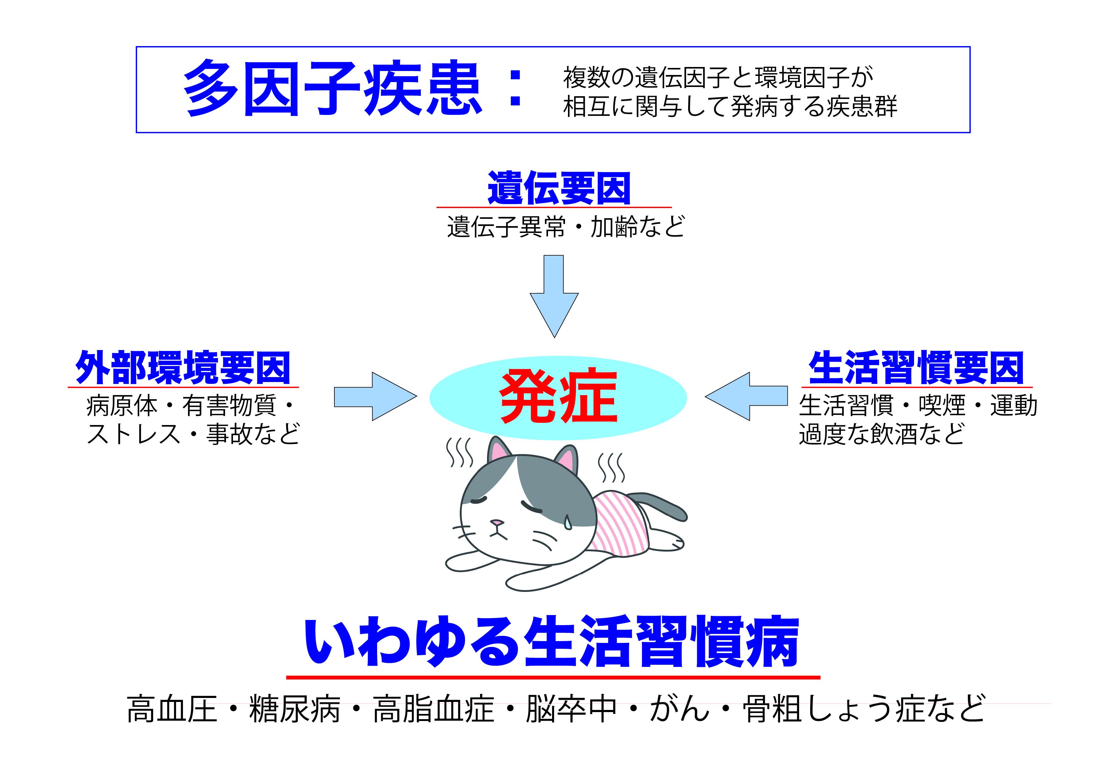 遺伝因子と環境因子1-01