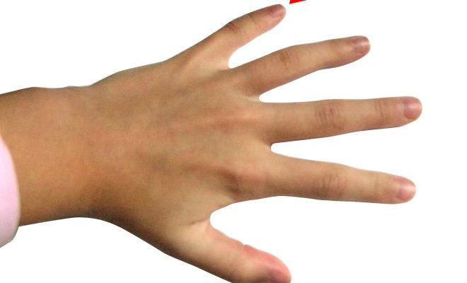 Hand_-_Little_finger