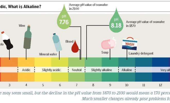PH_Scale-_Acidic_vs._Basic_(Alkaline)