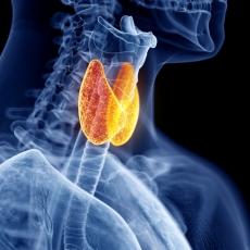 ThyroidDiseases