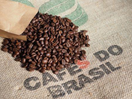 シングルリージョンのコーヒー豆はカビ毒が少ない傾向