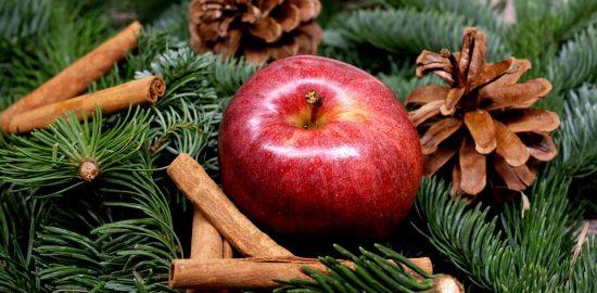 apple-1087044_960_720