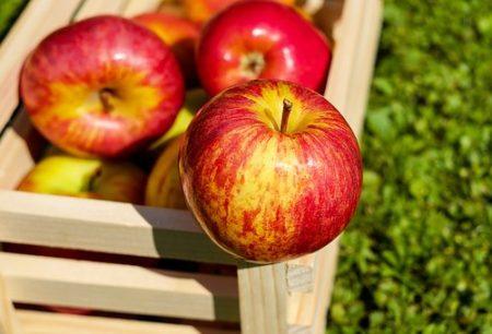 apple-1589874__340