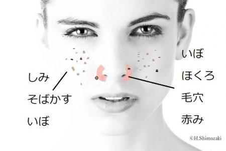 鼻赤&ほっぺmodel-2303361_640