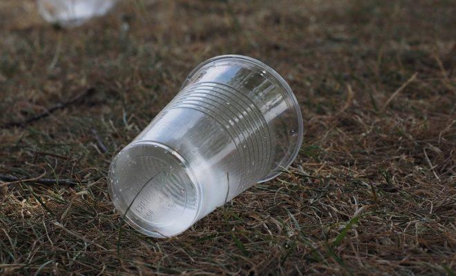 beverage-cups-2147903_960_720