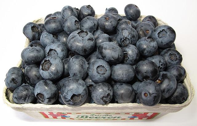 blueberry-2529980_640