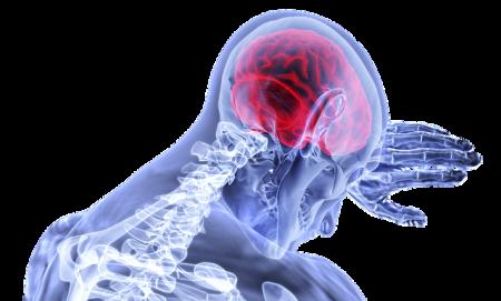 brain-3168269_640