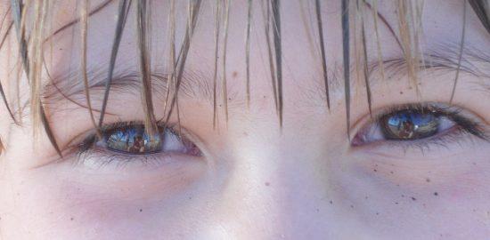 brown-eyes-775105_960_720