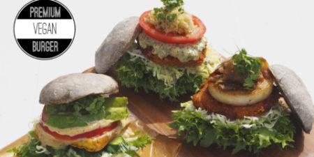 burger-banner-480x240