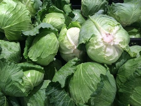 cabbage-1663179_640