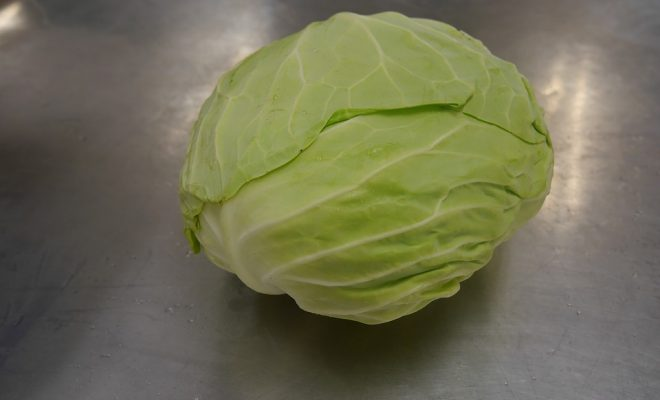 cabbage-2141690_960_720
