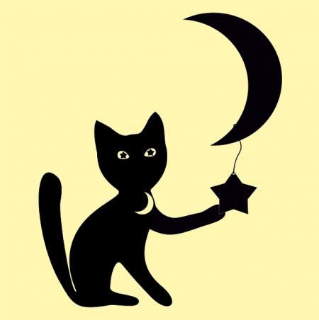 cat-1501139_640
