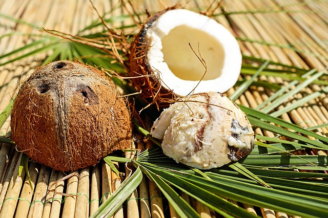 coconut-1501392_640
