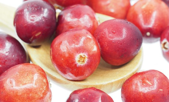 cranberry-1767424_960_720