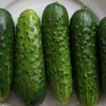 cucumbers-2240307_960_720