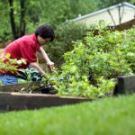 cute-young-boy-gardening-in-his-home-backyard-725x483
