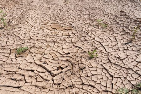 drought-19478__340