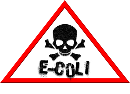 e-coli-hazard-1882290_640