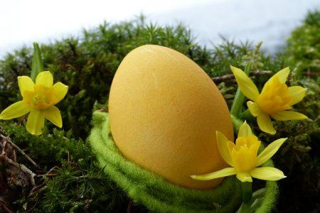 easter-egg-3165488_640