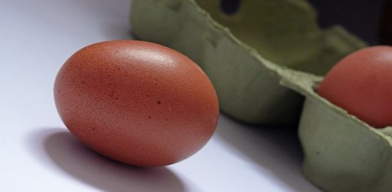 egg-1878039_960_720