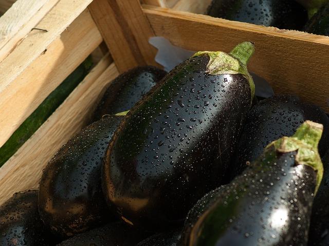 eggplant-1707629_640