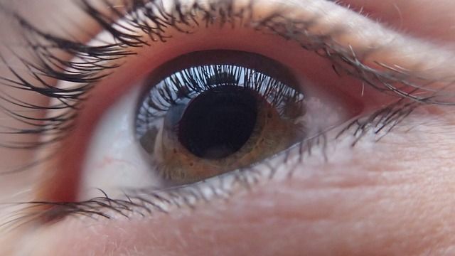 eye-321961_640