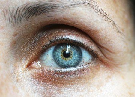 eyebrow-1792296__480