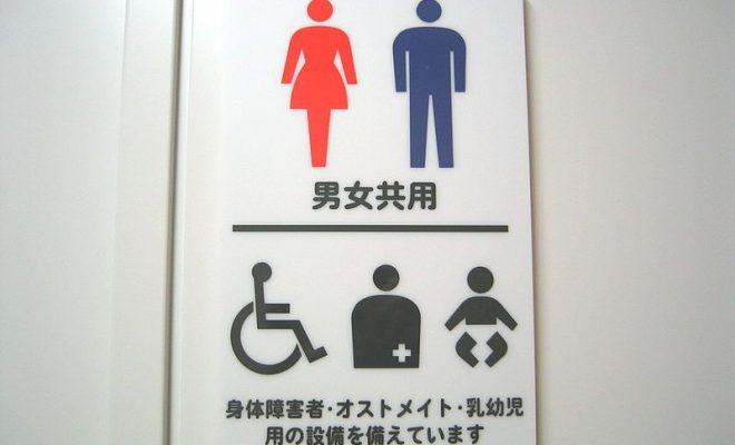800px-多目的トイレ