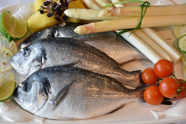 fish-2230852_640 (1)
