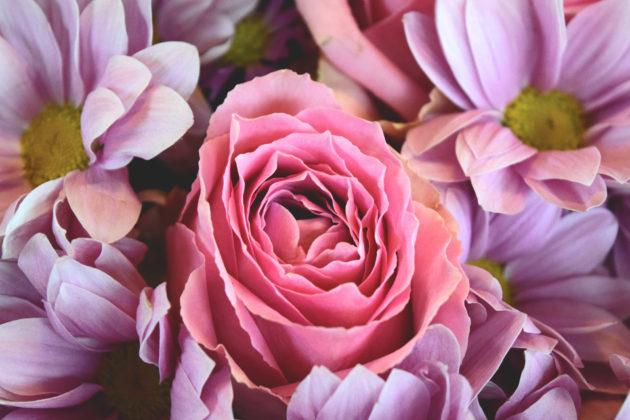flowers-love-