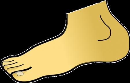 foot-310736_640