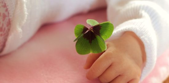 four-leaf-clover-1892660_640