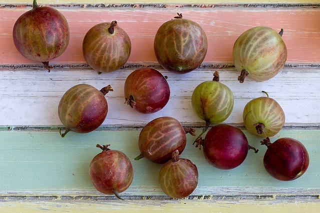 fruits-1533757_640