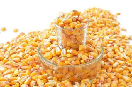 grains-1621884_640