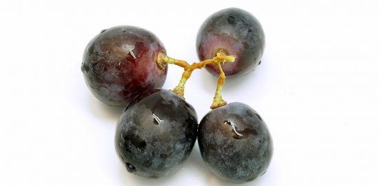 grape-2612696_960_720