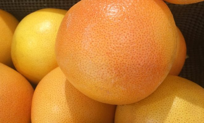 grapefruit-1578937_960_720