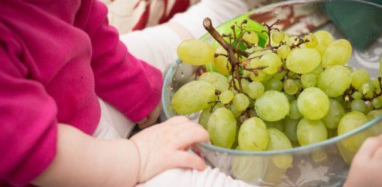 grapes-531207_960_720