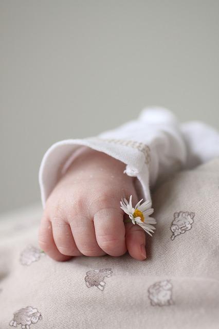 hand-1270531_640