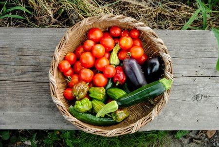 harvest-3611940_640