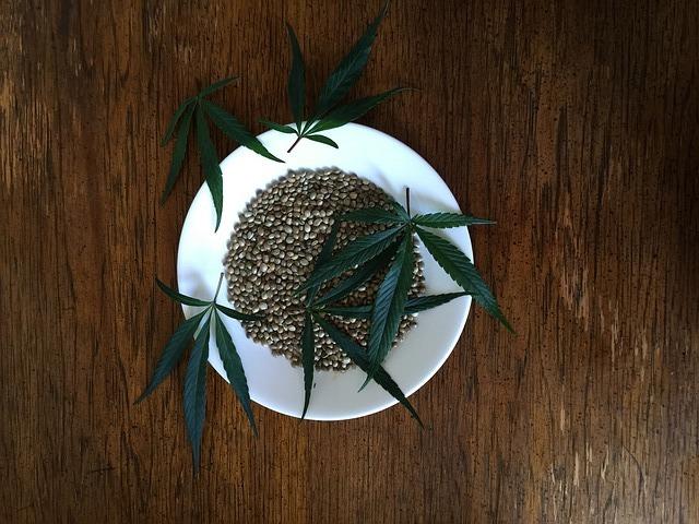 hemp-seeds-1418324_640