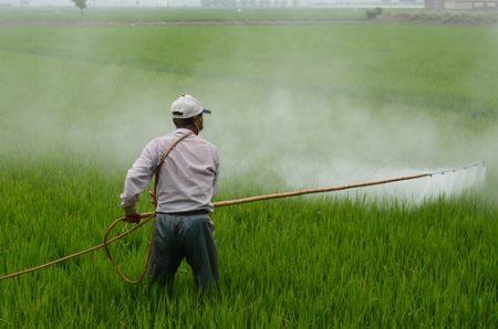 herbicide-587589__340