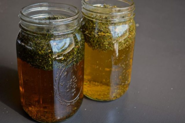 herbs-for-pregnancy-making-infusion