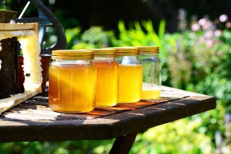 honey-352205_640