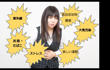 kassei3