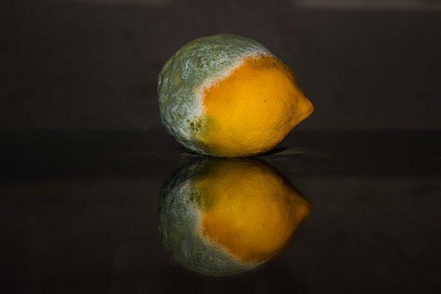 lemon-2146956_960_720