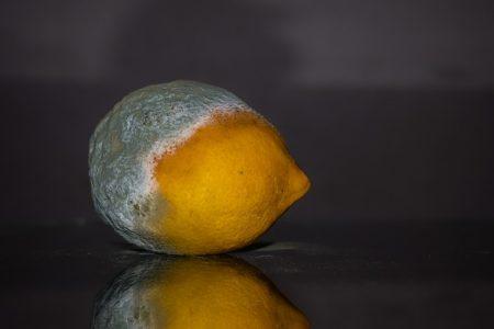 lemon-2146987_640