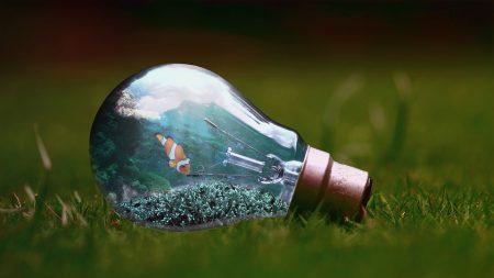 light-bulb-1129247_960_720