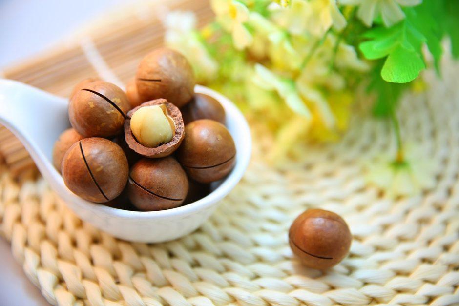 macadamia-nuts-1098170_960_720